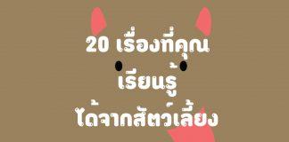 20 เรื่องที่คุณเรียนรู้ได้จากสัตว์เลี้ยง ตอนที่ 1