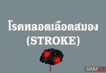 โรคหลอดเลือดสมอง (Stroke) คืออะไร